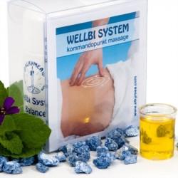 Wellbi System